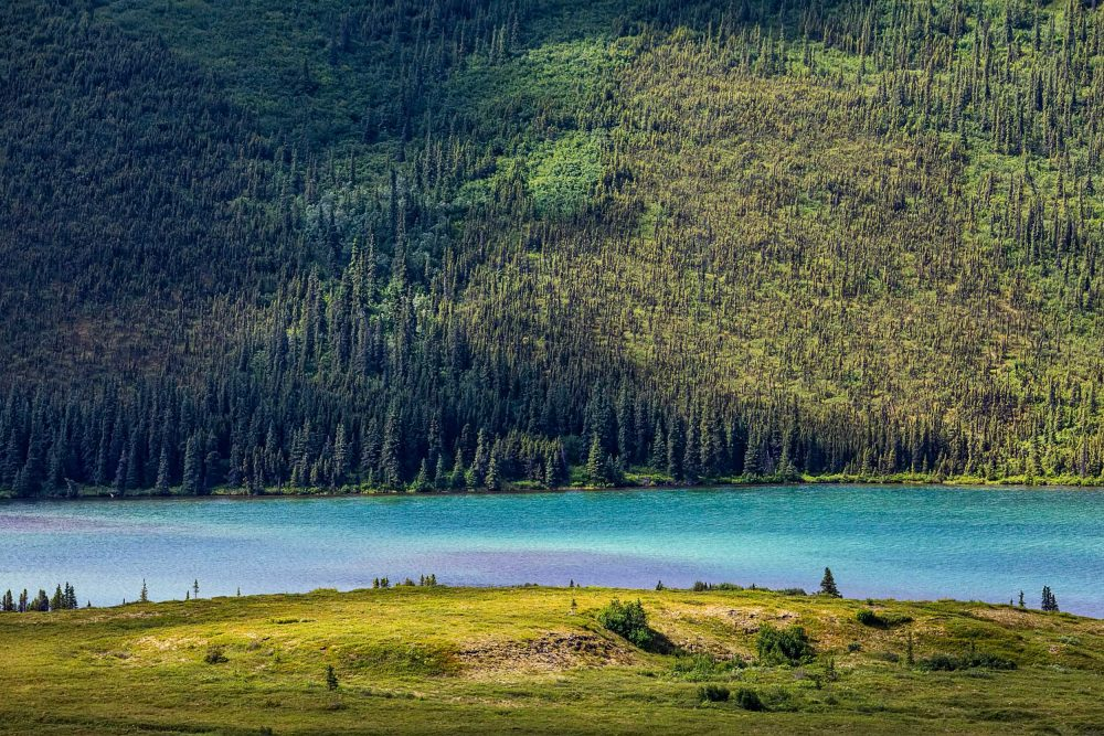 Rainbow lake in Kantishna Alaska