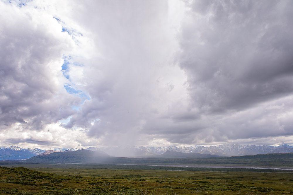 Raining in Denali