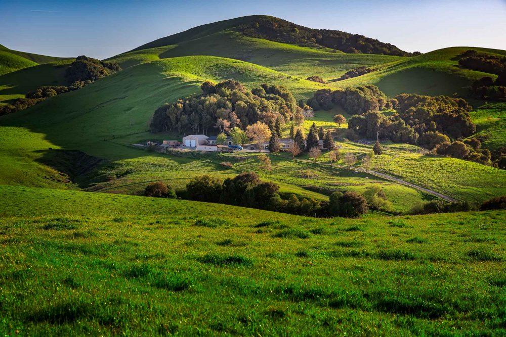 San Ramon Pastures