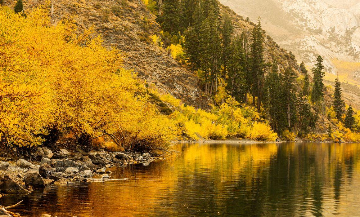 corporate headshot, landscape photography, photography tips